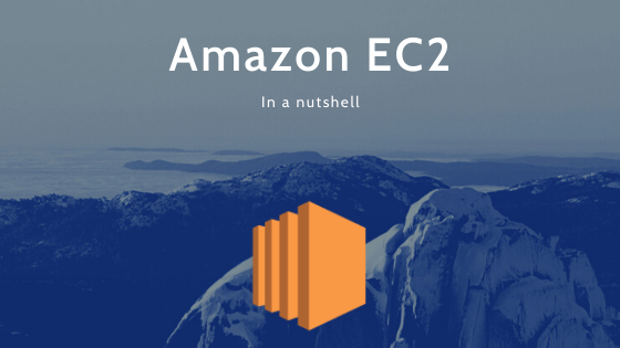 Amazon EC2 in a nutshell [AWS Solutions Architect Associate Exam]